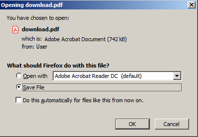 Save PDF Window